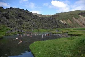 IJsland2010 019