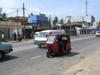 Huwelijksreis-SriLanka